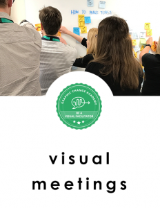 graphic facilitator using visual tools at online and in person meetings
